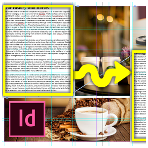 Indesign Threaded Text Training